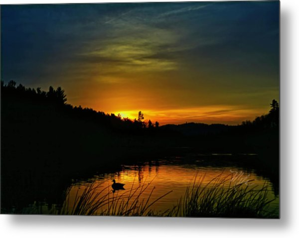 Bass Lake Sunrise Duck Metal Print
