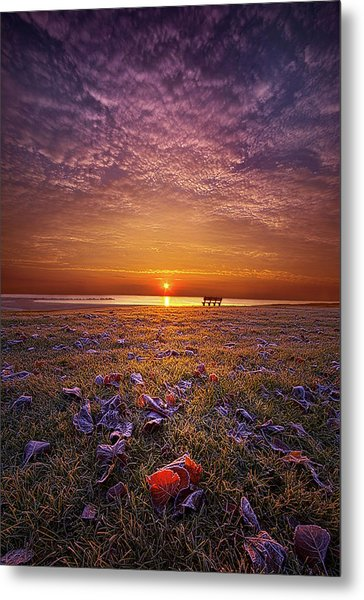 Metal Print featuring the photograph Be The Light by Phil Koch