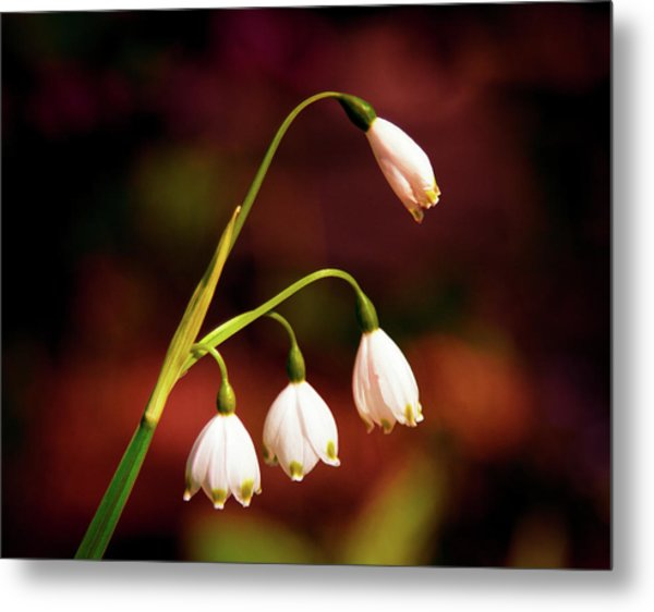 Beautiful Bells Metal Print