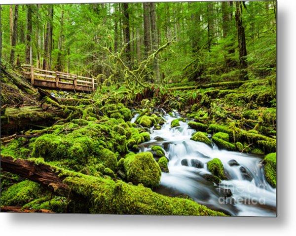 Beautiful Cascade Waterfall In Sol Duc Metal Print