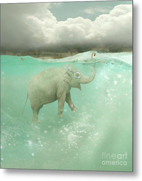 Beautiful Funny Elephant Swimmer Metal Print