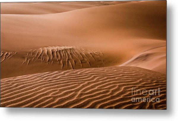 Beautiful Namib Desert 2 Metal Print