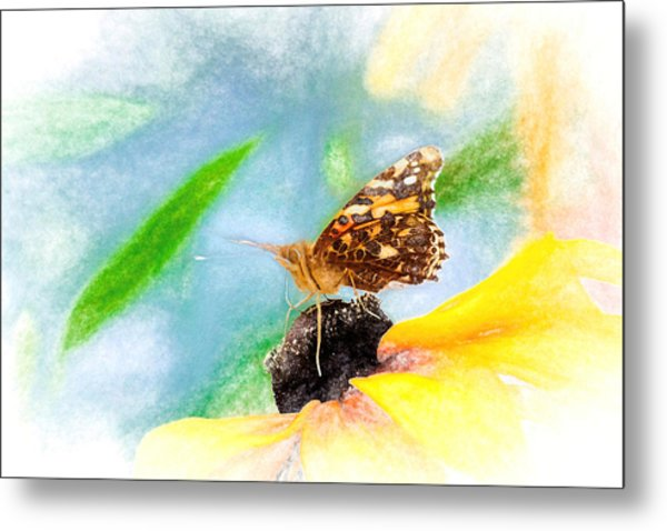 Beautiful Painted Lady Butterfly Metal Print