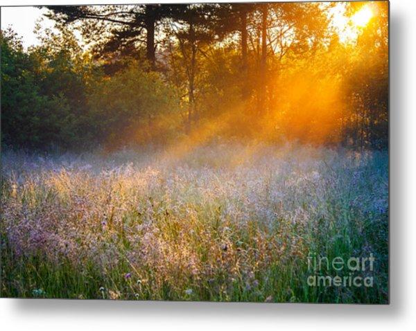 Beautiful Sunrise Over A Summer Metal Print