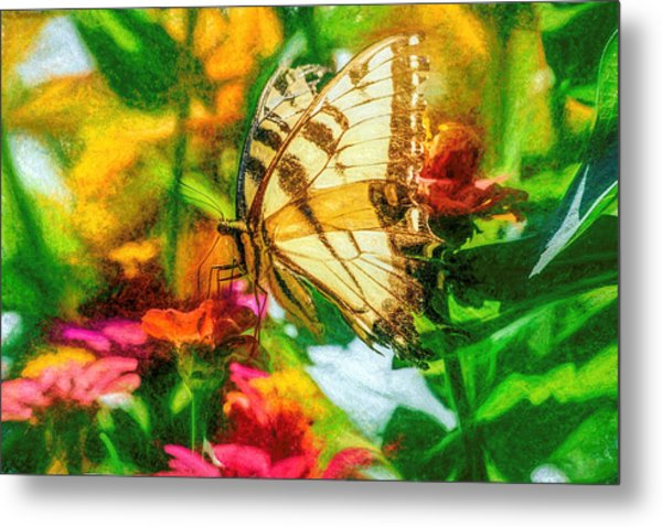 Beautiful Swallow Tail Butterfly Metal Print