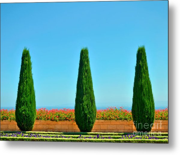 Beautiful Trees And Flowers In The Metal Print