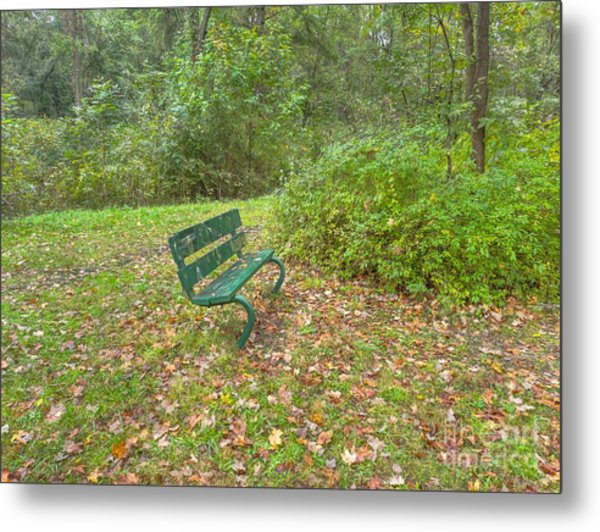 Bench Overlooking Pine Quarry Metal Print