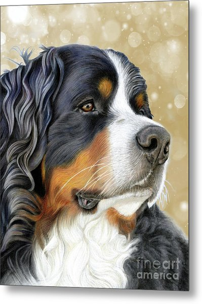 Metal Print featuring the mixed media Bernese Old Gold by Donna Mulley