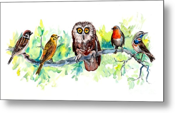 Birds Liner. Wildlife Banner Metal Print