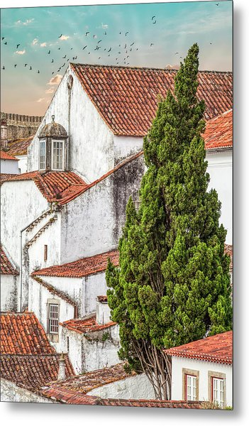 Birds Over Obidos Metal Print