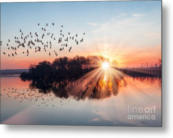 Birds Silhouettes Flying Above The Lake Metal Print