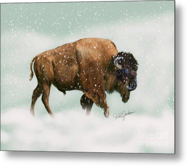 Bison In Snow Storm Metal Print
