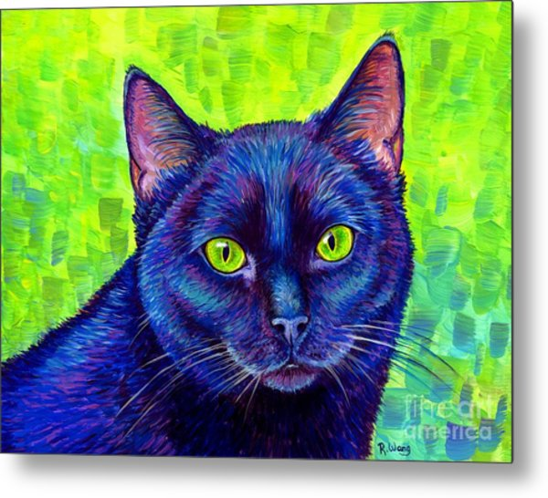 Black Cat With Chartreuse Eyes Metal Print