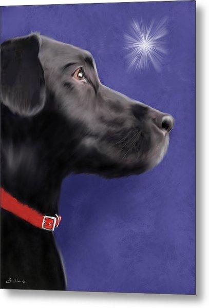 Black Labrador Retriever - Wish Upon A Star  Metal Print