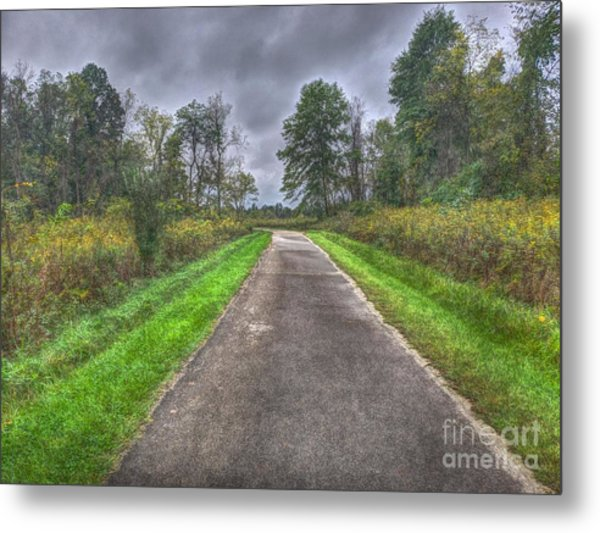 Blacklick Woods Pathway Metal Print