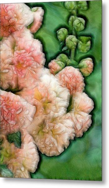 Blossoming Hollihock Flowers Metal Print