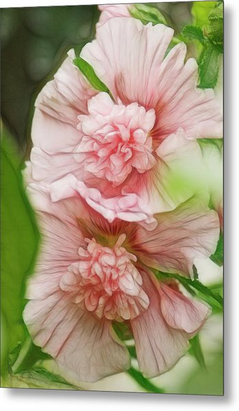 Blossoming Hollyhock Flowers In A Metal Print by Maria Mosolova