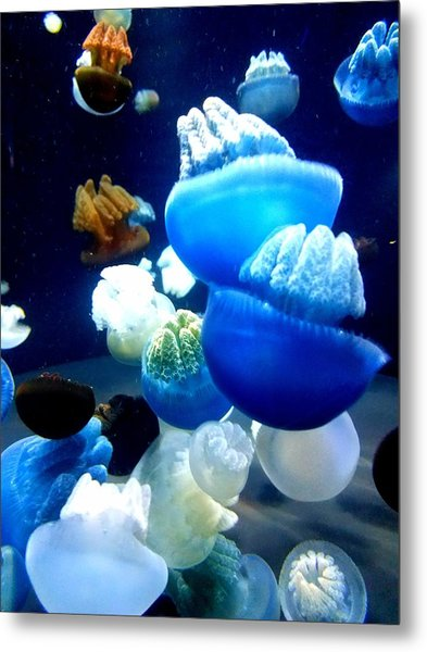 Metal Print featuring the photograph Blue Blubber  by Jennah Lenae
