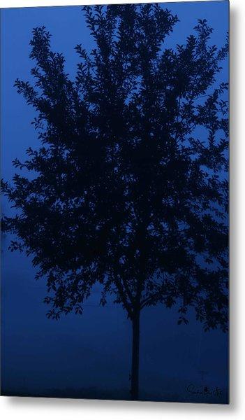 Blue Cherry Tree Metal Print