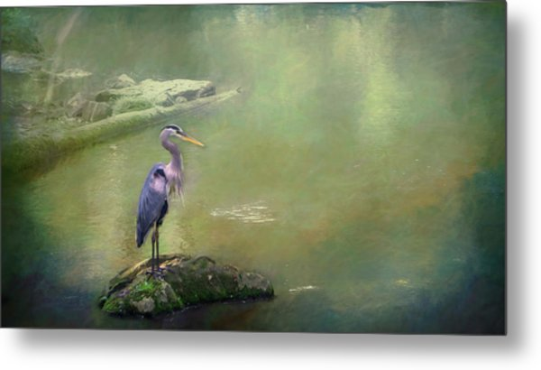 Blue Heron Isolated Metal Print