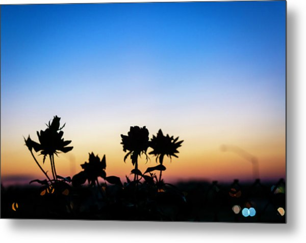 Blue Hour Sunset With Flowers Metal Print
