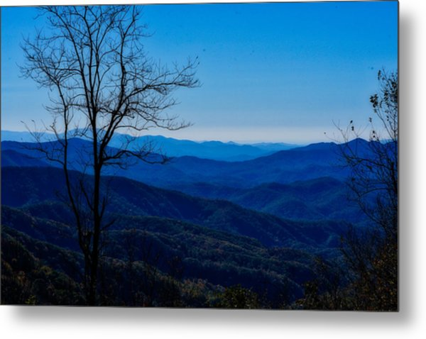 Metal Print featuring the photograph Blue by Kristi Swift