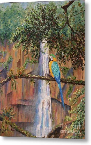 Blue Macaw Metal Print