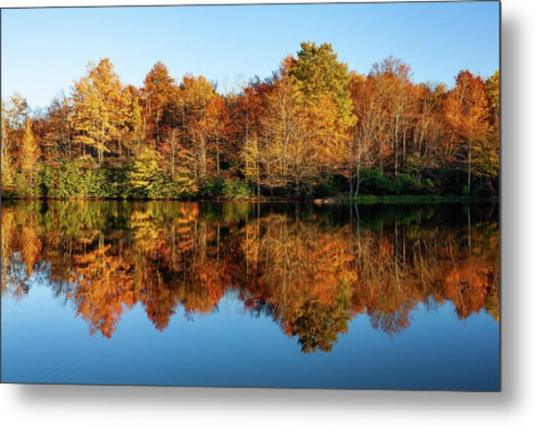 Blue Ridge Parkway Autumn Mirror Image Metal Print by Dan Carmichael