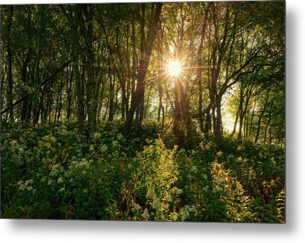 Blue Ridge Parkway - Last Of Summers Light, North Carolina Metal Print