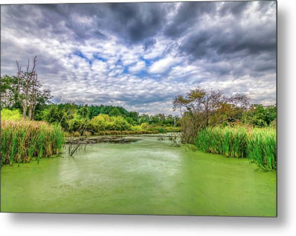 Blue Sky And Green Water Metal Print