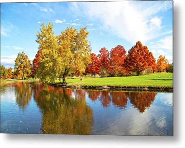 Metal Print featuring the photograph Boise Fall Foliage by Dart and Suze Humeston