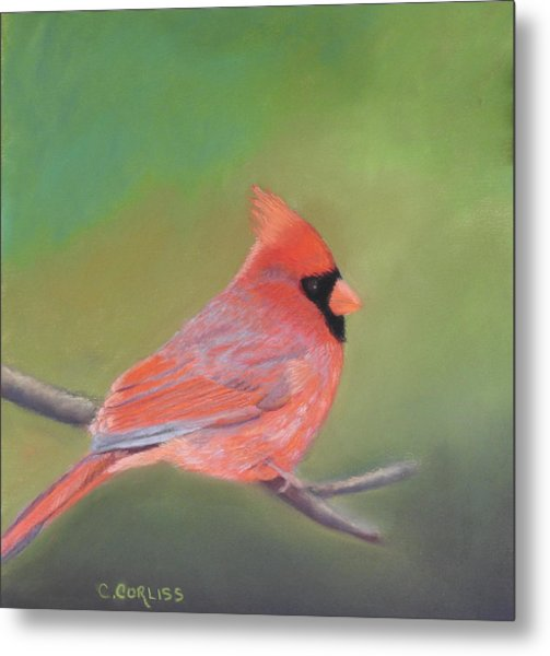 Bonded Pair - Male Cardinal Metal Print