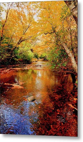 Boone Fork Stream Metal Print