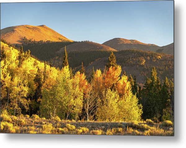 Metal Print featuring the photograph Boreas Mountain by Philip Rodgers