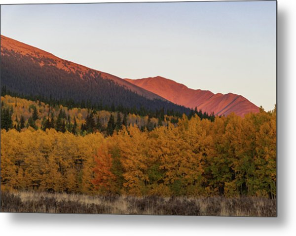 Metal Print featuring the photograph Boreas Pass by Philip Rodgers