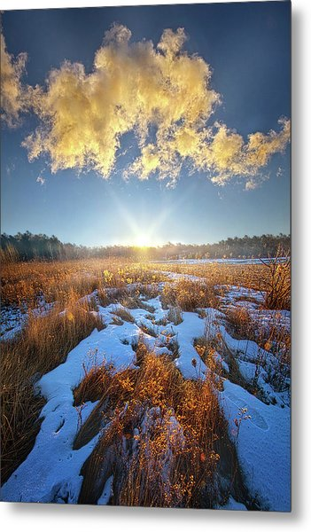 Metal Print featuring the photograph Bound Within The Silence by Phil Koch