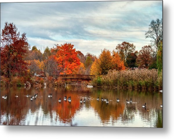 Metal Print featuring the photograph Bridge Over The Pond by Mark Dodd