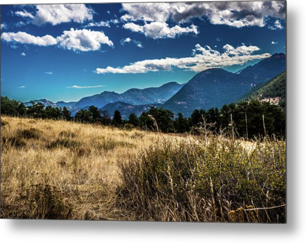 Metal Print featuring the photograph Brown Grass And Mountains by James L Bartlett