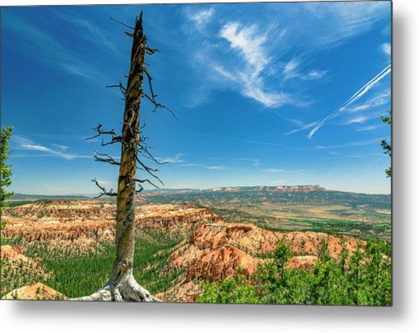 Bryce Canyon Np - Bryce Point Metal Print