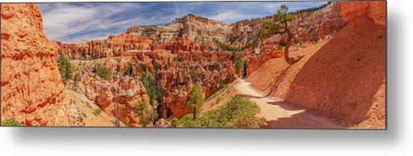 Bryce Canyon Np - Peek-a-boo Canyon Metal Print