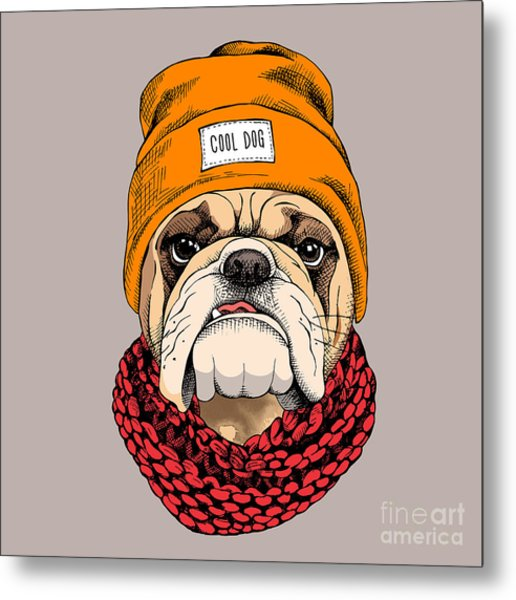 Bulldog Portrait In A Hipster Hat And Metal Print
