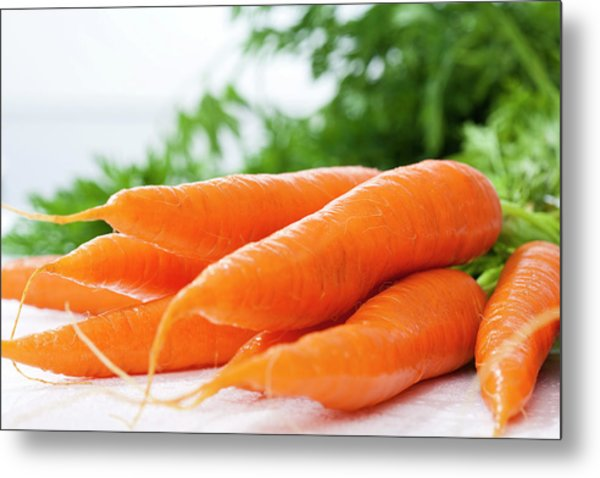 Bunch Of Fresh Carrots, Close Up Metal Print by Westend61