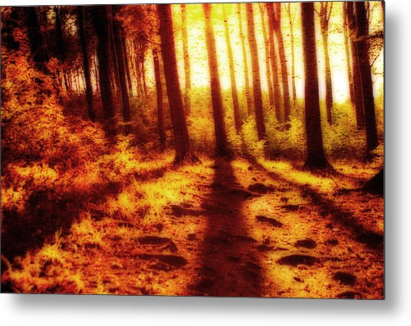 Burning Forest Metal Print