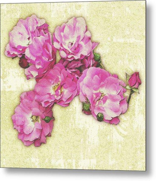 Bush Roses Painted On Sandstone Metal Print