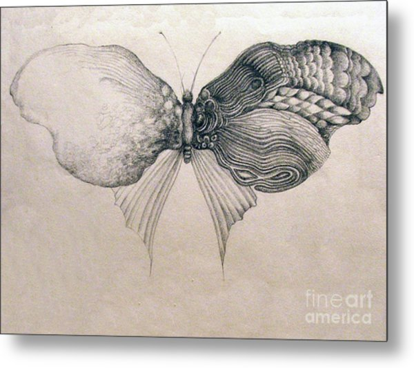 Butterfly For Jeffrey Metal Print