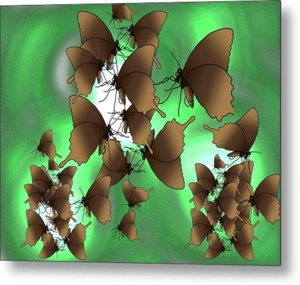 Butterfly Patterns 15 Metal Print