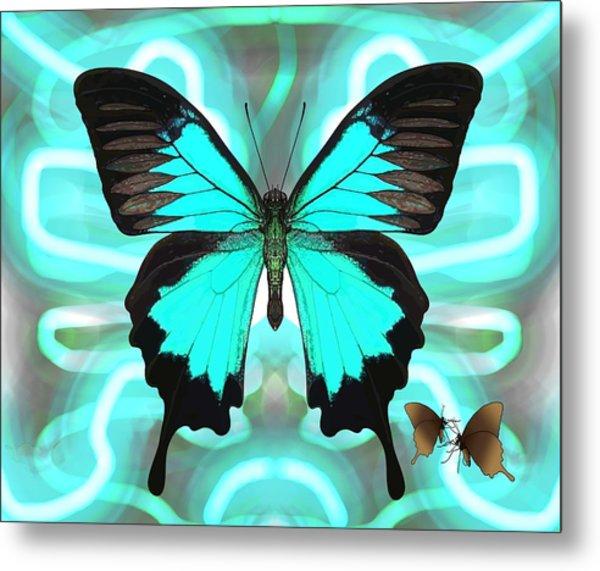 Butterfly Patterns 22 Metal Print