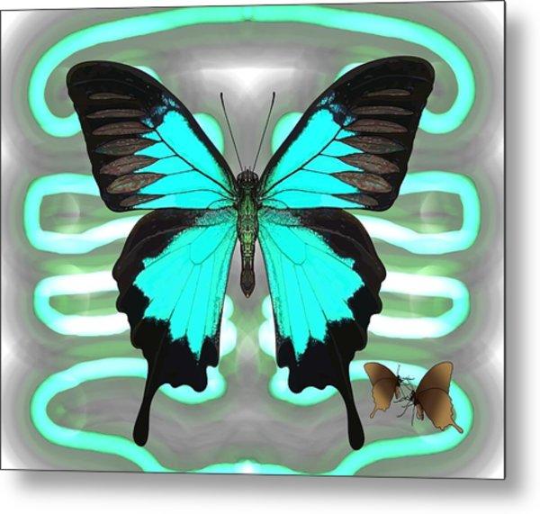 Butterfly Patterns 24 Metal Print