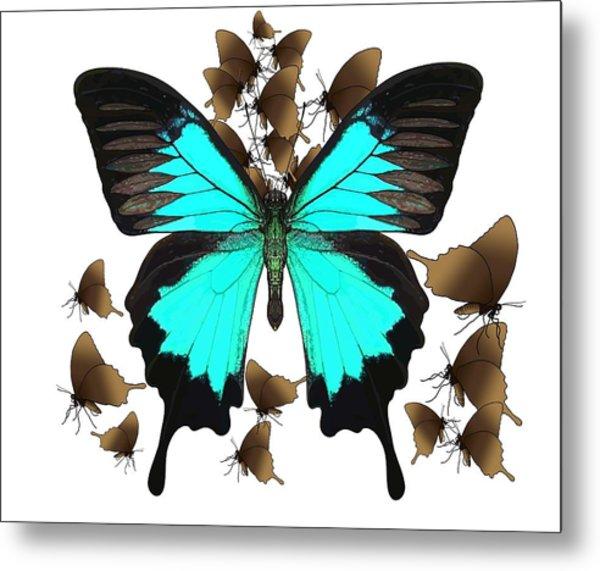 Butterfly Patterns 25 Metal Print