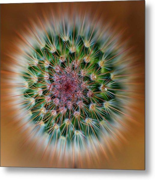 Cactus Cooler Metal Print